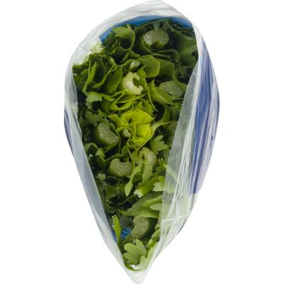 Fresh Picked Celery