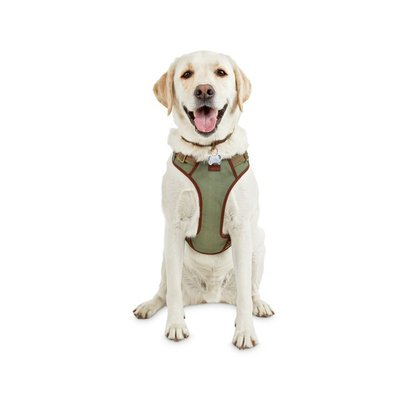 Redy Extra Large-Extra Extra Large Green Dog Harness