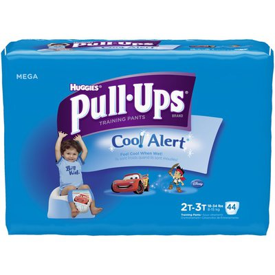 Pull-Ups Cool & Learn Boys 2T-3T Training Pants