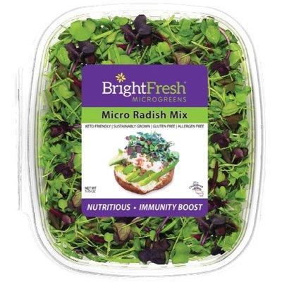 Bright Fresh Micro Radish Mix