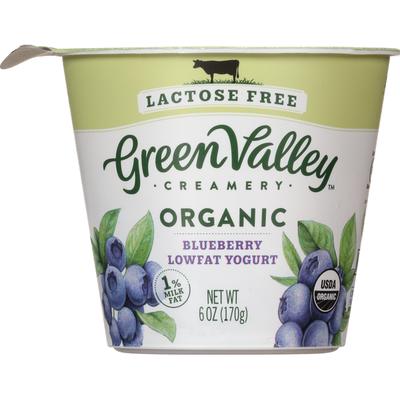Green Valley Creamery Yogurt, Lactose Free, Lowfat, Organic, Blueberry