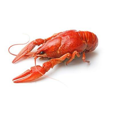 Fried Crawfish