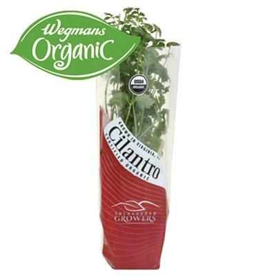 Shenandoah Growers Organic Cilantro