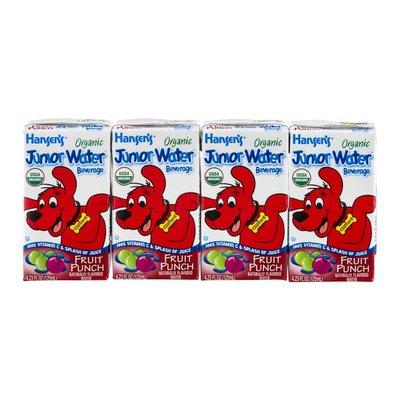 Hansen's Junior Water Fruit Punch - 4 PK