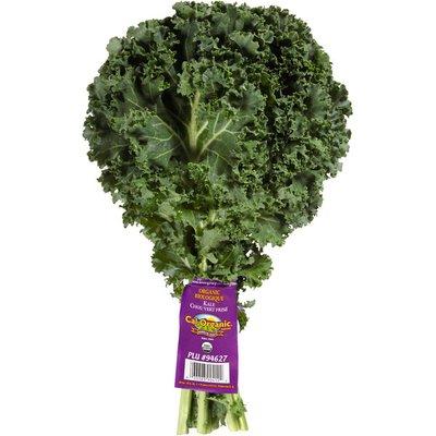 Cal Organic Farms Organic Green Kale Bunch
