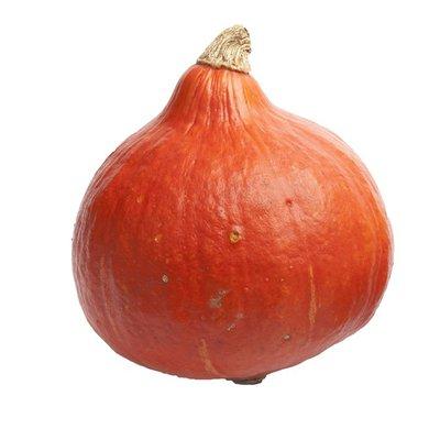 Organic Ambercup Red Kuri Squash
