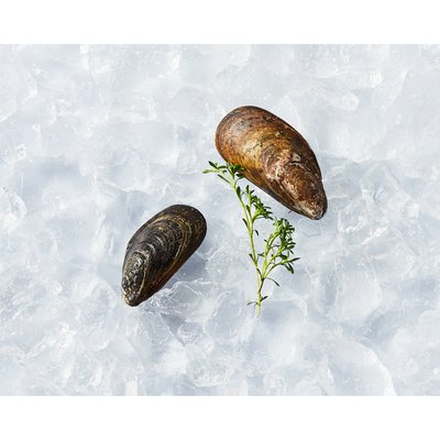Product of USA Wild Mussels