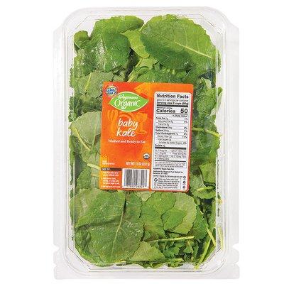 Wegmans Organic Baby Kale, FAMILY PACK