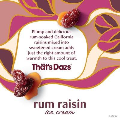 Haagen-Dazs Rum Raisin Ice Cream