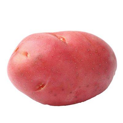 Klondike Rose Potato Bag