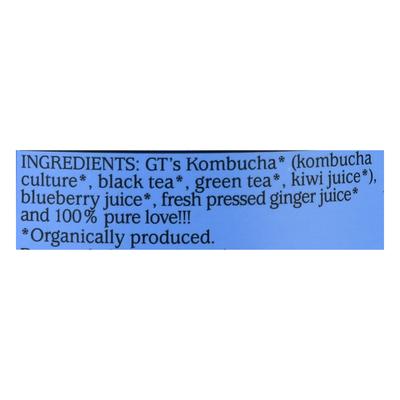 GTs Kombucha, Raw, Gingerberry