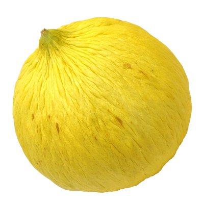 Casaba Melon