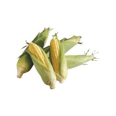 Organic Corn Cello