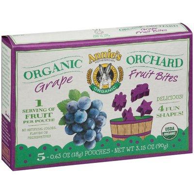 Annie's Organic Grape 5-0.63 oz Pouches Organic Orchard Fruit Bites
