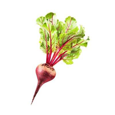 Organic Beet