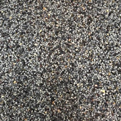 Frontier Whole Poppy Seed