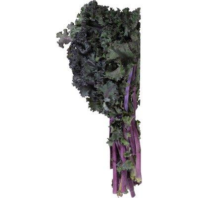 Organic Red Kale Bunch