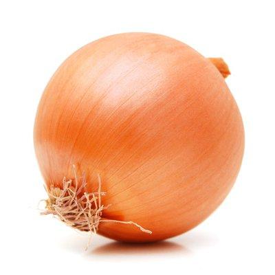 Organic Yellow Onion Bag
