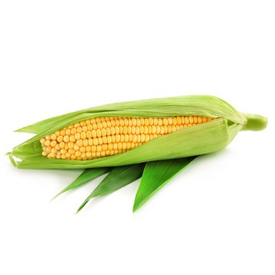 Organic Yellow Sweet Corn
