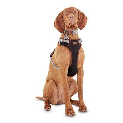 Extra Extra Large & Extra Extra Extra Large Redy Gray Dog Harness