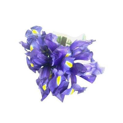 Fresh Blooms 5-stem Iris