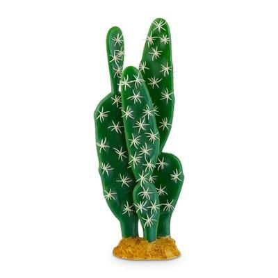 Image Medium Cactus