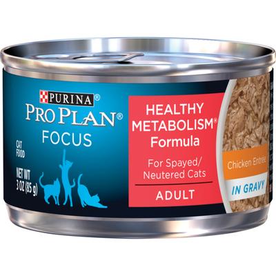 Purina Pro Plan High Protein Gravy Wet Cat Food, FOCUS Healthy Metabolism Formula Chicken Entree