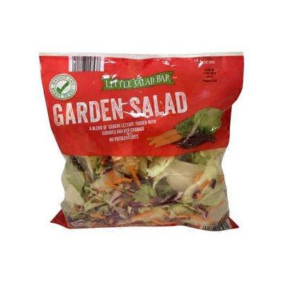 Little Salad Bar Salad, Garden