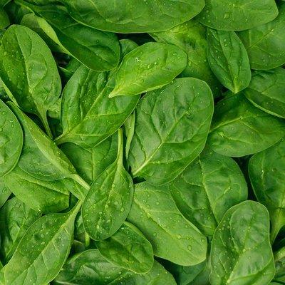 Organic Baby Spinach Bunch