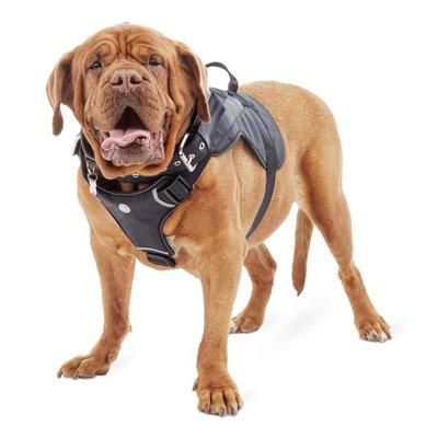 Good2 Go Extra Large & Extra Extra Large Big Dog Adjustable Harness