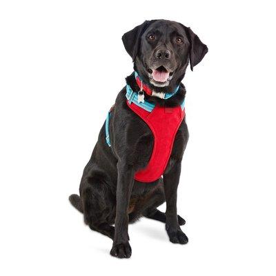 Extra Large & Extra Extra Large Blue Redy Dog Harness