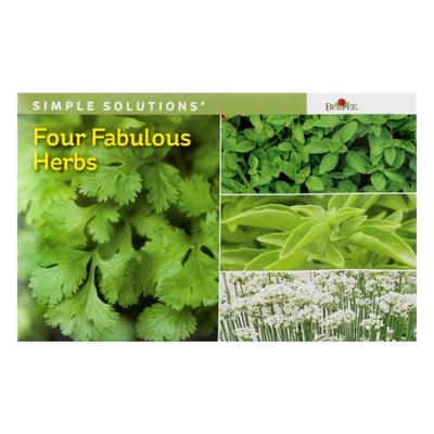 Burpee Four Fabulous Herbs