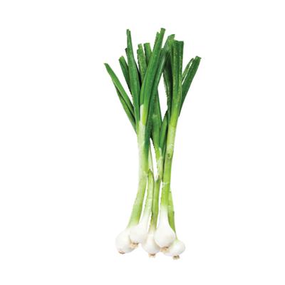 Organic Green Onions (Scallions)