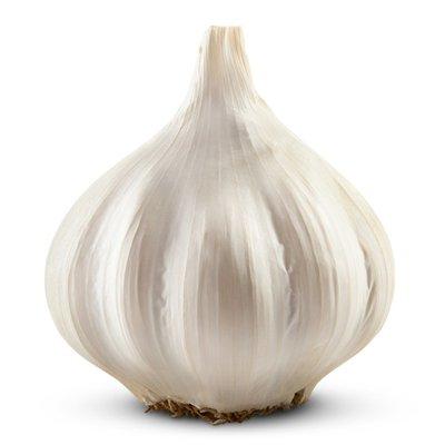 Organic Garlic