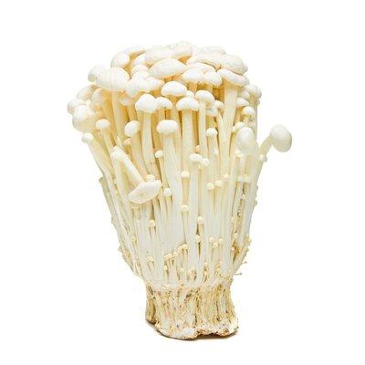 Organic Enoki Mushroom