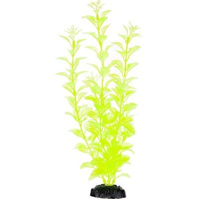 Petco Green Background Aquarium Plant