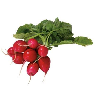 Organic Radish Bunch