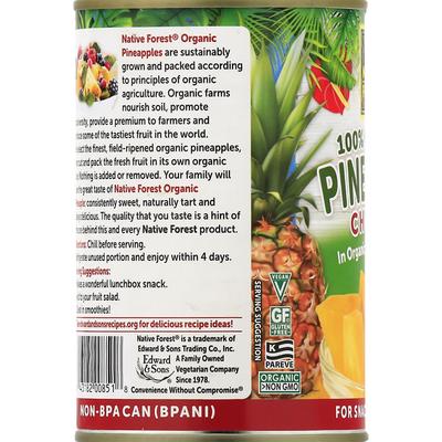 Native Forest Pineapple Chunks, 100% Organic