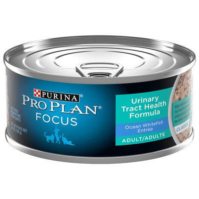 Purina Pro Plan Urinary Tract Health Pate Wet Cat Food, FOCUS Urinary Tract Health Formula Ocean Whitefish Entree