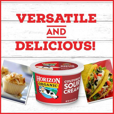 Horizon Organic Cultured Sour Cream