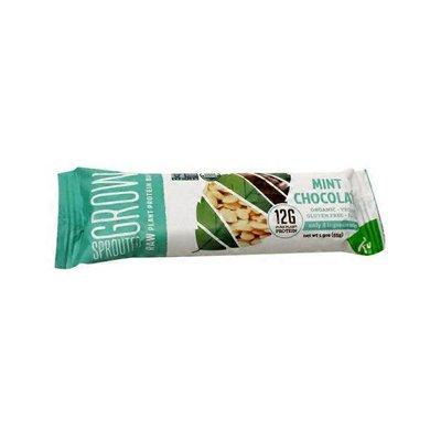 Go Raw Organic Mint Chocolate Bar