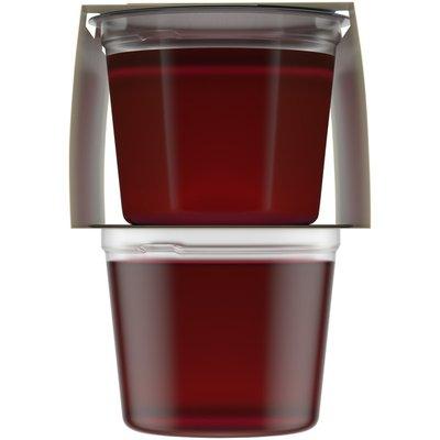 Jell-O Raspberry Sugar Free Ready-to-Eat Gelatin Snacks