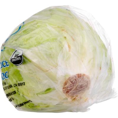 Pure Pacific Organic Iceberg Lettuce
