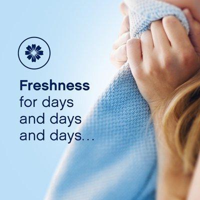 Downy April Fresh Liquid Fabric Conditioner (Fabric Softener)