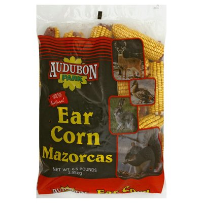 Audubon Park Ear Corn