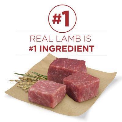 Purina ONE Natural Dry Dog Food, SmartBlend Lamb & Rice Formula