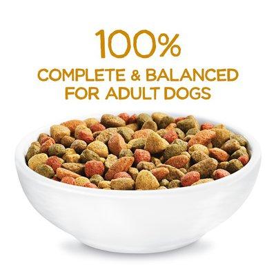 Purina Beneful Originals With Farm Raised Chicken, Real Chicken Dry Dog Food
