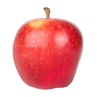 Organic Elstar Apple