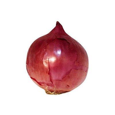 Organic Red Onions