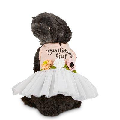 Bond & Co Large Birthday Dress Pet Costume